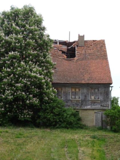 Verfallener Bauernhof bei Schriesheim