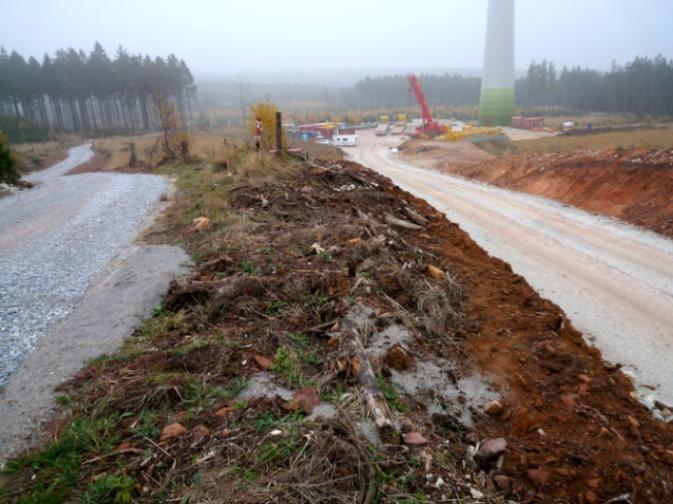 Ohne Proteste von Greenpeace und Co. wurde Wald für einen Windpark im Soonwald, Rheinland-Pfalz gerodet. Eine gute Rodung, dient doch die Rodung dem Schutz des Klimas argumentieren viele Umweltverbände.