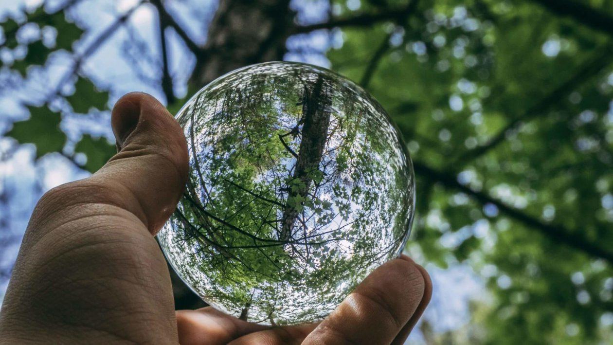 Umwelt-Watchblog